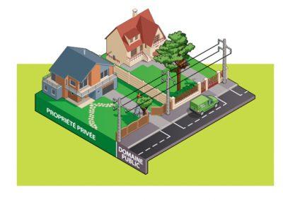 L'arbre est planté en propriété privée et déborde sur le domaine public où est située la ligne électrique | Arbiosa élagage et paysage
