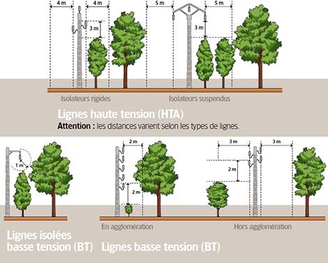 Gabarits électriques | Arbiosa élagage et paysage