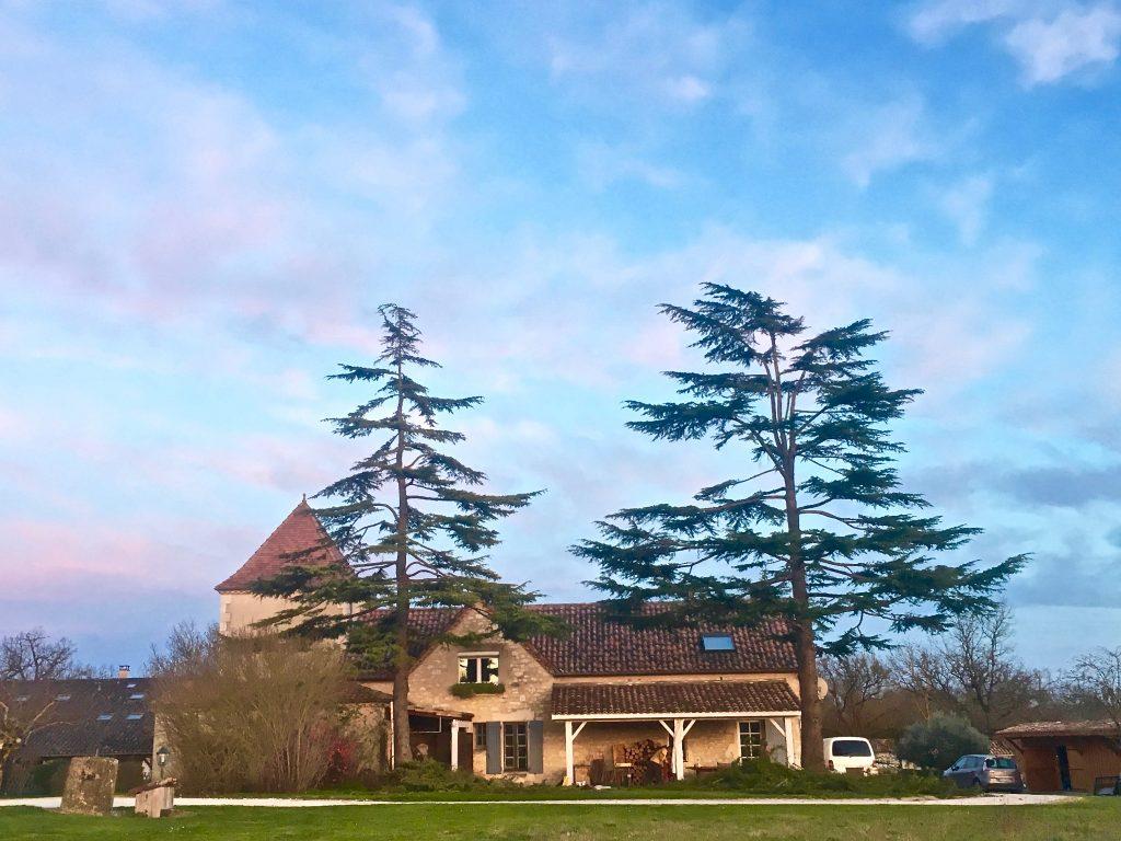Taille d'arbre à La Limouzinière   ARBIOSA élagage et paysage