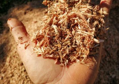 Nous fabriquons du broyât grâce à notre broyeur de branche pour faire du paillage et du composte.