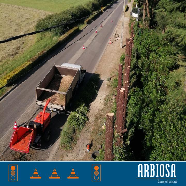 Démontage et abattage dangereux dans les lignes électrique et en bord de route à la Limouzinière.